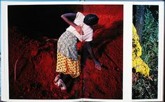"REVIEW: ""FLAMBOYA"" BY VIVIANE SASSEN via Shane Lavalette"