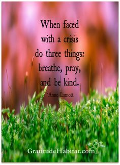 Breathe, pray, and be kind. Visit us at: www.GratitudeHabitat.com