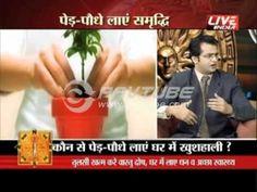 Vaastu and Plantation - Dr Puneet Chawla