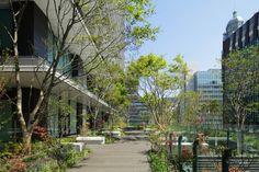 庇と緑を積層させた環境モデルビル  東京スクエアガーデン|日建設計