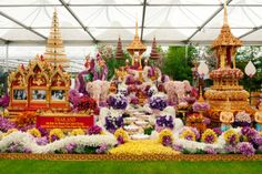Nong Nooch tropical botanical garden, from Thailand display at the 2014 Chelsea Flower Show.  To think that these have all been hand placed.