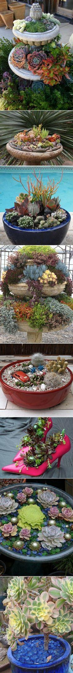 DIY Succulent Garden Ideas by Aniky