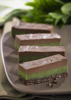 Chocolate Mint Slice | Almonds, cacao, coconut, cashews, tahini, spirulina… wow! What a nutrient-dense line up in this delicious dessert. Not only does it look pretty, your taste buds and the cells of your body will be very glad you made it. Very satisfying due to the healthy fat content, a small piece will hit the spot! | www.drlibby.com
