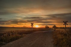 Railroad crossing going over grid road in SK at sunset. Fine Art Prints, Canvas Prints, Grid, Lens, Country Roads, Sunset, Frame, Outdoor, Sunsets