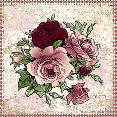Hoy encontré estas flores y pensé que os gustarían. que paséis un buen día queridas amigas!