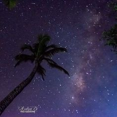 "Repost from Instagram ! #WeLike ! #Madinina by @audreybpicture ""La voie lactée au coco  #nofilter #themilkyway #coconut #silhouette #star #sky  #landscapes #landscape_lovers #longexposure #longexposureoftheday #longexposhots #longexpoelite #longexpo #nightphotography  #martinique #ig_martinique #matinik_pictures  #matinikbelpeyi #westindies_pictures  #972PhotoTour  #beautiful & #wonderful #colorful  #photography #photographer"" http://ift.tt/1Rcdc18"