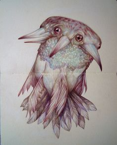 coloured pencil illustration by marco mazzoni