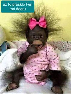 Crochet Hats, Love You, Teddy Bear, Romantic, Funny, Baby, Animals, Motto, Humor