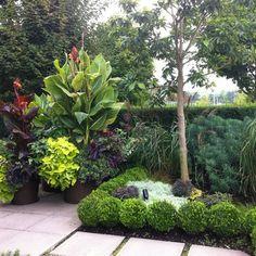 Minimalist small tropical garden design not necessarily for Garden design zone 8