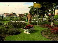 Pareja de esposos dedican su tiempo a crear bellos jardines en Keneddy
