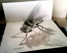 3D Drawings Josue Neftali (Mexico)