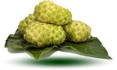 Organic Noni Fruit Powder
