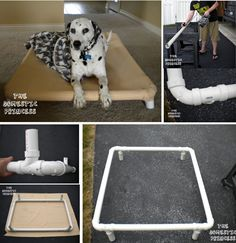 Rasied Dog Bed - The WHOot   Easy to make DIY dog bed