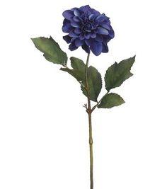 """25"""" Dahlia Stem-Blue  $ 5.99"""