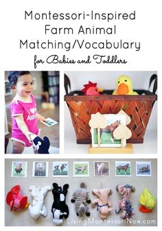 A fun Montessori-inspired farm-animal matching and vocabulary activity for babies and toddlers; perfect with Schleich farm animals or Beanie Baby farm animals - Living Montessori Now Farm Activities, Vocabulary Activities, Animal Activities, Preschool Themes, Montessori Activities, Infant Activities, Infant Sensory, Preschool Farm, Farm Games