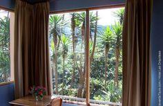 View from Hotel Las Orquideas #CostaRica | monteverdetours.com