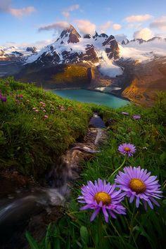 900+ idee su Paesaggi naturalistici nel 2021   paesaggi, natura, luoghi