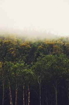 north of wawa by five one nine, via Flickr