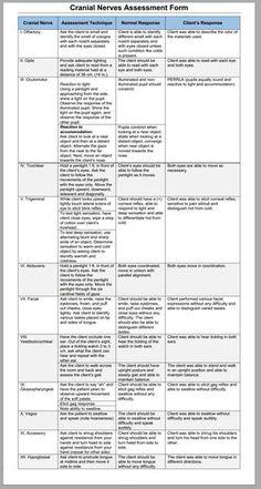 Cranial Nerve Neuro Assessment Cheat Sheet … | FNP | Nursi…