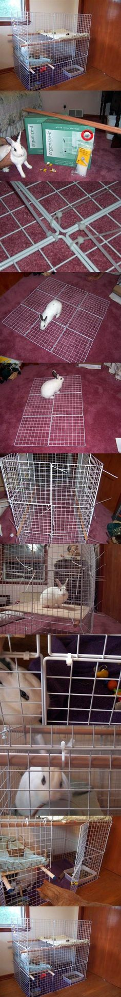 DIY Indoor 3-Level Rabbit Condo 2