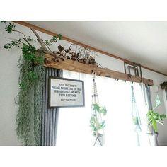 Curtain Box, Room With Plants, Deco Boheme, Garden Fountains, Diy Curtains, Room Lights, Handmade Home, Dining Room Design, Plant Decor