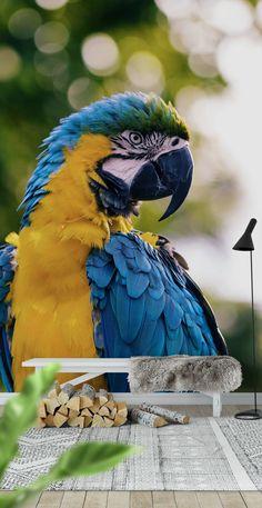 papegoja Tapet