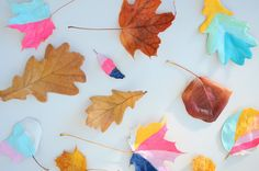 Craftykins // Painted Leaves