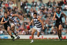 Australian Football League (AFL) Port Adelaide vs Western Bulldogs Round 14 on Adelaide Oval , Saturday, June (AEST). This could be an entertaining match competition, especially if the Western Bulldogs are appearing in Wallpaper English, Australian Football League, Western Bulldogs, Puppy Grooming, Bulldog Puppies, Competition, Running, Cats, Sports
