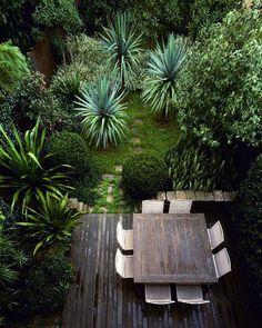 Massif de palmiers et yuccas garten pinterest gardens for Jardin moderne rennes