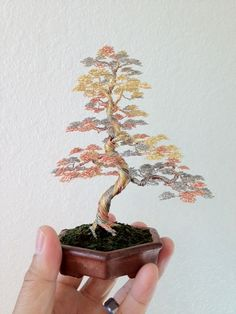 Miniature Wire Bonsai Trees by Ken To - These are so beautiful.