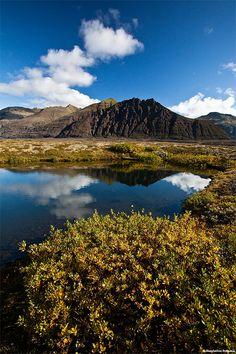 Autumn in Skaftafell National Park - Iceland by skarpi - www.skarpi.is, via Flickr