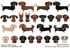 perros Dachshund digital prediseñadas para Personal y