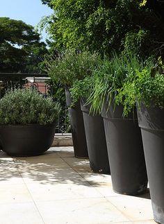 Canto gourmet no jardim: salsinha, cebolinha, hortelã e manjericão em vasos de cimento com 1,10 m de altura