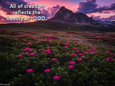 ALL OF CREATION REFLECTS THE BEAUTY OF GOD!!!