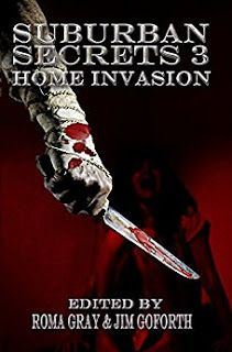 Darkness Breaks the Cloudy Veil: Suburban Secrets 3: Home Invasion