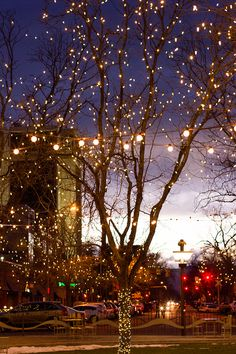 Visit Old Town Fort Collins for a stroll under the beautiful holiday lights… Victorian Christmas Decorations, Christmas Stairs Decorations, Christmas House Lights, Beautiful Christmas Decorations, Christmas Town, Holiday Lights, Outdoor Christmas, Modern Christmas, Christmas Ideas