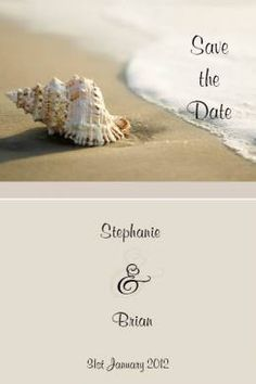 Framed Seashell Beach Save the Date & Magnet in Taupe - DreamDay Invitations