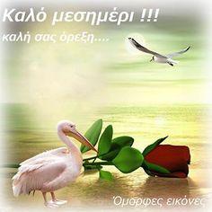 Καλό ανοιξιάτικο μεσημέρι σε όλους :) Good Night, Good Morning, Greek Quotes, Greek Recipes, Bird, Pictures, Animals, Nighty Night, Buen Dia