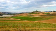 Farm view, Tuesday, Oct 07