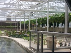 The futuristic greenhouses at Epcot, Disney World. They are actually incredibly cool