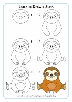 Learn To Draw A Sloth
