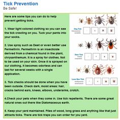 How Lyme Disease Might Affect a Child