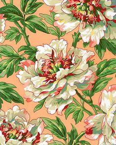 Kaffe Fassett Collective Spring 2014 - Tree Peony - Adobe Pink