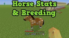 Minecraft Xbox One + PS4 -  Fastest Horse Guide - Breed The Best Horse