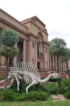 The Ditsong Museum of Natural History, in Pretoria, South Africa. Beaches In The World, Countries Of The World, Purple City, Clifton Beach, Port Elizabeth, Cultural Events, Pretoria, Famous Landmarks, My Land