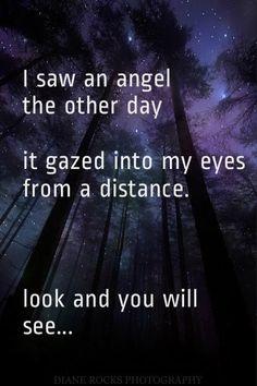 Angels .