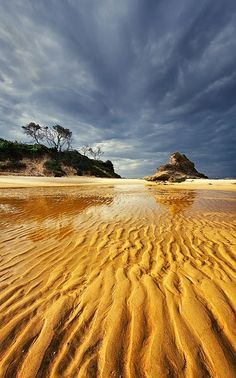 Tide left beauty in sand. | See More Pictures