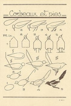 Les Moineaux - how to draw birds (French) from pillpat Flickr