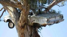 Top 66 Pictures of Stupid Car Accidents, Just a little Bizarre. Unusual car accidents and strange situations to be in with a car.