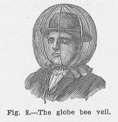 Bees - The globe bee veil Bee Pictures, Bee Pics, Honey Label, Beekeeping For Beginners, Raising Bees, Bee Illustration, Bees Knees, Historical Costume, Bee Keeping